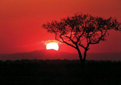 Singita-Sabi-Sand-South-Africa