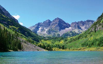 The Abundance of Aspen