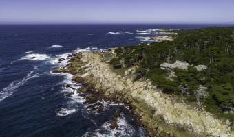 3208 17 Mile Drive, Pebble Beach, California 93953, United States, ,Residential,For Sale,3208 17 Mile Drive,305715