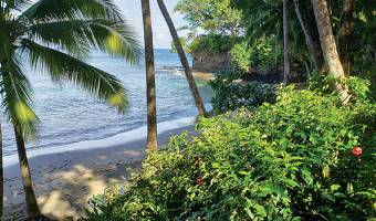 Isla Saboga, Panama, 5 Bedrooms Bedrooms, ,5 BathroomsBathrooms,Residential,For Sale,572680