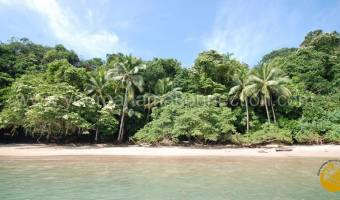 Isla Saboga, Panama, ,Land,For Sale,740551